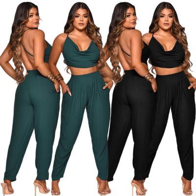 1060537 Latest Design Summer 2021 Women Fashion Clothing Sexy Two Piece Pants Set
