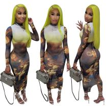 MOEN New Trendy Long Sleeve Turtleneck Dresses Women 2021 Sexy Women Tulle Print Casual Long  Dress