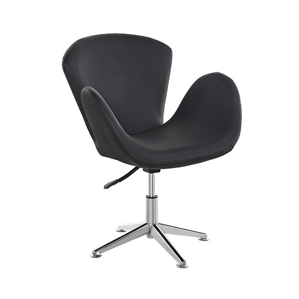 Swan chair living room leather