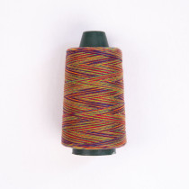 Rainbow Sewing Thread - 040418# - MOQ 5, Accept Mixed Colors