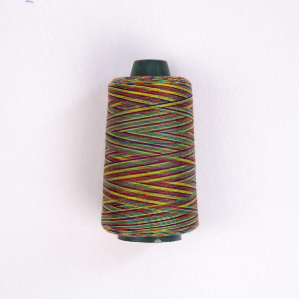 Rainbow Sewing Thread - 081011#