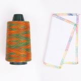 Rainbow Sewing Thread - 040806#
