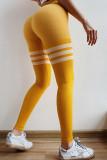 Seamless Striped Yoga Fitness Tights Leggings