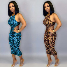 Leopard print dress with sling