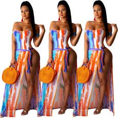Two piece sexy fashion print swimwear