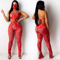 Sexy fashion print bra split two piece suit (without mask)