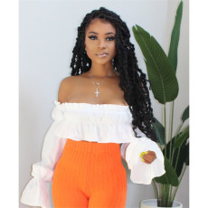Fashionable pleated flared sleeve top (top only)