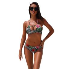 Sexy two piece printed bikini suit