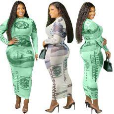 Fashion dollar positioning print mesh dress