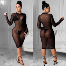 Crew Neck Long Sleeve see through mesh dress