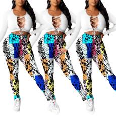 Colorful snakeskin printed pencil pants