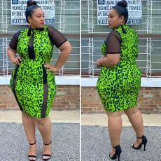 Square neck print A-line dress