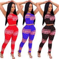 Two piece multi color printed short sleeve pants