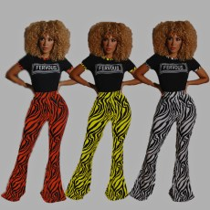 Two piece pair of striped print flared pants