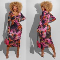 Tight Sexy print casual dress