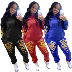 Two piece set of fashionable printing