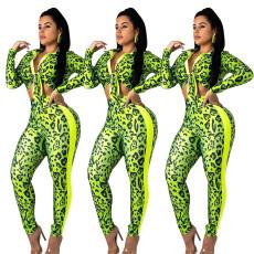 Green leopard print Pants Set
