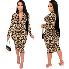 Wrinkled leopard print dress