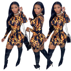 Sexy long sleeve Leopard Dress