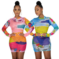 Printed Pullover long sleeve dress skirt