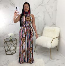 Fashion Jumpsuit with neck print