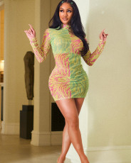 Pattern two color contrast Long Sleeve Dress