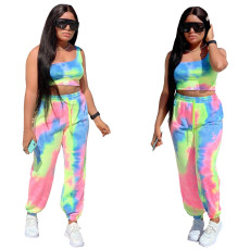 Printed one shoulder wide leg two piece set