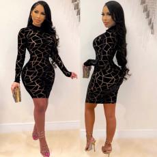 Fashion printed mesh round neck long sleeve skirt