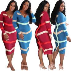 Fashion printed back zipper dress