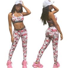 Sport print Yoga jogging suit
