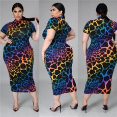 Fashion print Short Sleeve Dress