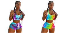 Two piece printed sexy swimsuit