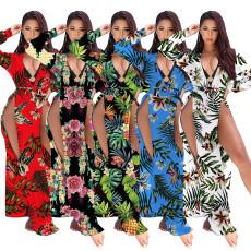 Swimsuit Chiffon print dress