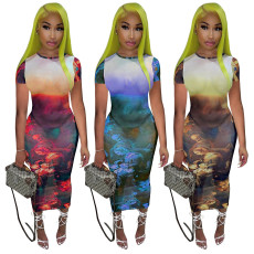 Perspective screen oil painting Printed Dress