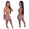 Fashion sexy color printing two piece swimsuit
