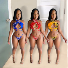Two piece fashion sexy printed SWIMSUIT SET
