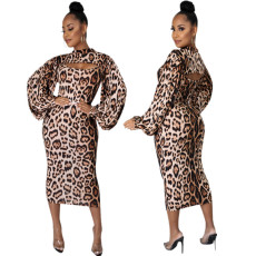Two piece fashion Leopard Dress