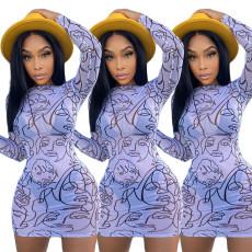 Fashion print screen dress