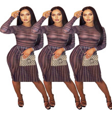 Fashion sexy mesh dress