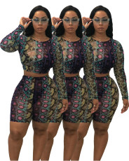Sexy print casual two piece set