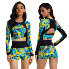 Sexy long sleeve swimsuit two piece set