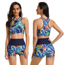 Sexy swimsuit two piece set