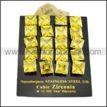 Elegant Stainless Steel Stone Earrings    e000643