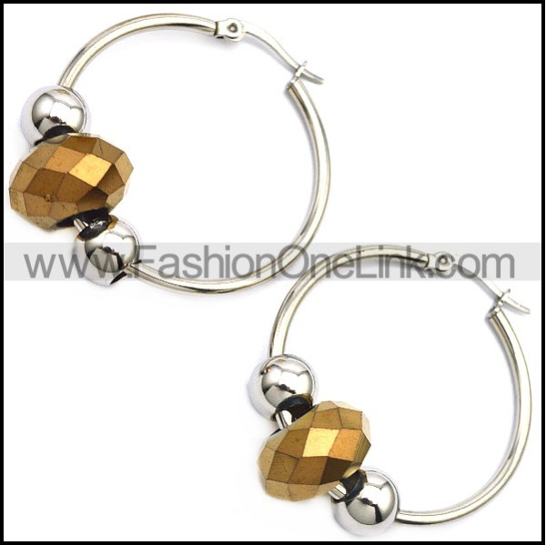 Stainless Steel Earring e001646