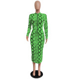 long zipper printed dress 2475