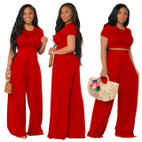 Two pieces wide pants set 4259