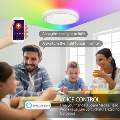 WIFI Remote Control Φ300 12'' Φ400 16'' LED Ceiling Light Main Light White Changeable Night Light 4W RGB -110LM/W - 100-240Vac Dimmable - ETL List
