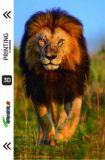 Pet animal series 3D UV back film TL-0000094