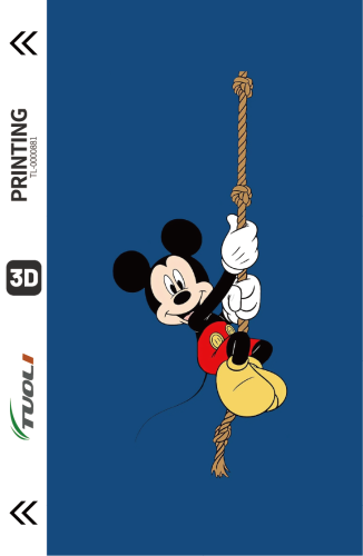 Cartoon animation series 3D UV back film TL-0000881