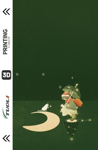 Christmas series 3D UV back film TL-0002178